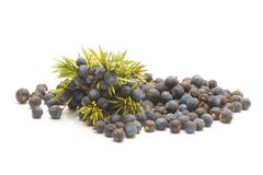 Juniper berries isolated on white background. Juniper berries isolated on white Stock Photography