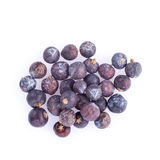 Juniper berries isolated on a white background Royalty Free Stock Photography