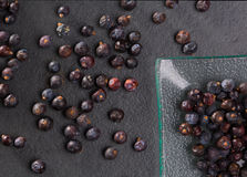 Juniper berries macro detail closeup on black Royalty Free Stock Photography