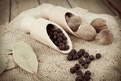 Juniper berries and nutmeg apples Royalty Free Stock Photos