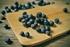 Juniper berries Royalty Free Stock Image