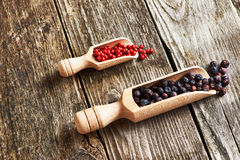 Juniper berries and rose pepper Royalty Free Stock Photos
