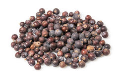 Juniper berries Royalty Free Stock Photography