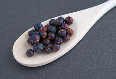 Juniper berries in a wood spoon Stock Image