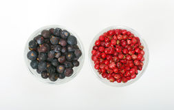 Juniper berry and pink pepper in two little glasses. Royalty Free Stock Photo