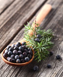 Juniper berry. On a wooden background Royalty Free Stock Photography