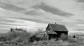 Juniper Flats House B/W. This homestead is in a area called juniper flats near mopen,Or Royalty Free Stock Images