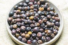 Juniper fruit. On a saucer Stock Images