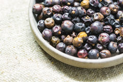 Juniper fruit. On a saucer Royalty Free Stock Photography