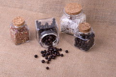 Juniper in glass containers Stock Images