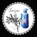 Juniper. Health and Nature Collection. Aromatic juniper oil (watercolor and graphic illustration Stock Images