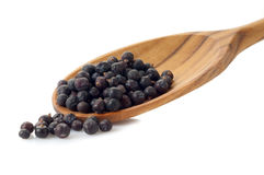 Juniper  over the spoon Stock Photography