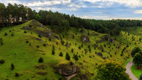 Juniper Slopes in Kleinziegenfeld Valley in Germany Royalty Free Stock Images