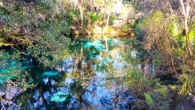 Juniper Springs, FL Stock Image