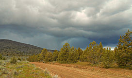 Juniper Storm. Approaching storm along King Road by Juniper Butte near Culver, OR royalty free stock image