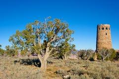 Juniper Tree and Desert Watchtower Royalty Free Stock Photo