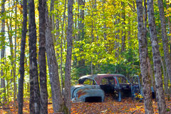 Junk Car among the Trees. An abandoned car sits among the trees and rusts away Stock Images