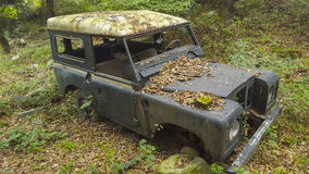 Junk car in woods. Old rusted jeep in woods Stock Images