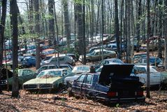 Junk cars in a forest in Virginia Stock Image