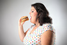 Junk food Royalty Free Stock Images