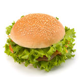 Junk food hamburger Royalty Free Stock Images