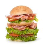 Junk food hamburger Stock Photography