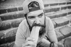 Junk Food Inconformista despreocupado comer la comida basura mientras que siente las escaleras Individuo que come el perrito cali imagen de archivo