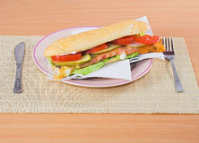 Junk food - sandwich Stock Images