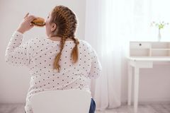 Chubby young woman consuming junk food. Junk food. Turned away overweight woman eating hamburger while sitting on the chair Royalty Free Stock Photo