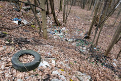 Junk in a forest Stock Photography
