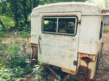 Junk vehicle. A junk vehicle surrounded by plant and trees Stock Image