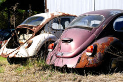 Junk Volkswagen beetle cars. The back of two old wrecked and abandoned Volkswagen beetle cars stock photos