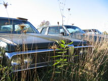 Junk Yard Car. An old car parked in the weeds in a junk yard Royalty Free Stock Photo