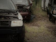 Junk Yard Cars royalty free stock image