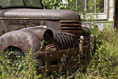 Junk Yard Truck. Junk yard vehicles showing old rusted truck  in overgrown weedy area Stock Image