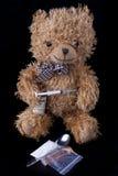 Junky Bear Stock Image