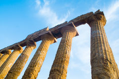 Juno Temple images libres de droits