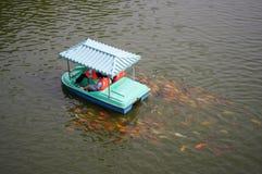 Junshan ö i Dongting sjön Royaltyfri Fotografi