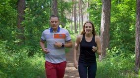 Junte activar en el bosque que corre en el campo almacen de metraje de vídeo