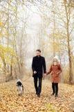 Junte caminar con el perro en el parque y el abrazo Hombres del paseo del otoño Imagen de archivo libre de regalías