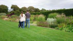 Junte caminar con un cochecito de niño en un jardín de flores metrajes