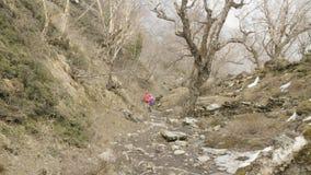 Junte caminar en bosque misterioso entre las montañas de Nepal almacen de video