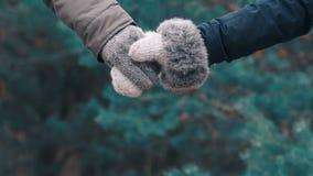 Junte llevar a cabo las manos en el fondo del bosque tirado en la cámara lenta almacen de metraje de vídeo