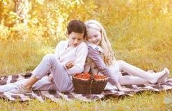 Junte a los adolescentes con la cesta en la tela escocesa en otoño Fotografía de archivo