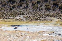 Junthuma喷泉,形成由地热活动 流星锤 库存照片