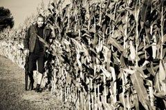 Junto a un campo de maíz fotografía de archivo