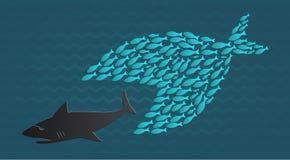Juntos nos colocamos: El pequeño pescado grande come pescados grandes Imágenes de archivo libres de regalías
