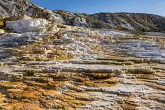 Jupiter Terrace på den Mammoth Hot Springs Yellowstone nationalparken Wyoming USA Royaltyfri Foto