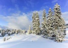 Jura mountain in winter, Switzerland Stock Images