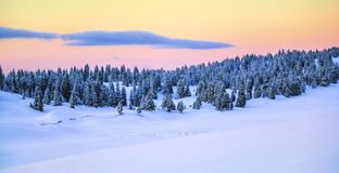 Jura mountain in winter, Switzerland Royalty Free Stock Photos